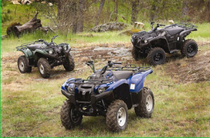 Want to buy a used kelley blue book atv kelley automotive for Kelley blue book motorcycles yamaha