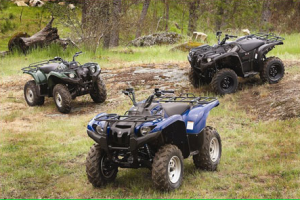 Kelley Blue Book ATVs